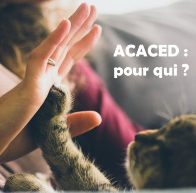 Nooe smart-faune ACACED